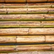 Bamboo raft — Stock Photo #13152873