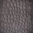 Stock Photo: Crocodile leather texture