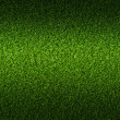 Green grass background — Foto de stock #19113395