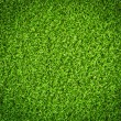 Green grass background — Foto de stock #19131935