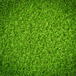 Green grass background — Foto Stock #19131935