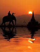 Elephant tourist in Thailand — Stock Photo