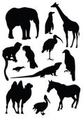 Vector set of black silhouettes of animals — Stock Vector