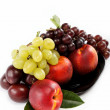 Fruits nectarine and bunch of grapes isolated against white ba — Stock Photo #12809743