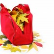 Colorful leaves sennie red bag isolated on white background. — Stock Photo #13153775