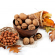 Autumn harvest. Walnuts and hazelnuts on a white background. — Stock Photo