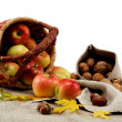Autumn theme. Apples and walnuts on linen canvas. — Stock Photo #16174121