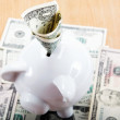 Piggy bank with American dollar bills. — Stock Photo