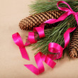 Christmas decorations. Spruce branch with cones and pink ribbon. — Stock fotografie