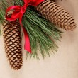 Photo: Christmas decorations. Spruce branch with cones and red ribbon.
