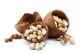 Pistachio, peanuts nuts and hazelnuts in the shell of the coconu — Stock Photo