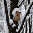 Birdhouse in a tree in the snow. Winter. - Stock Photo