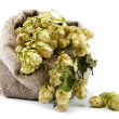 Foto de Stock  : Hops in bag isolated on white background.
