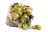 Hops in a bag isolated on white background. — Stock Photo