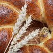 A fresh loaf of bread sprinkle with poppy seeds. - Stok fotoğraf