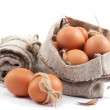 Brown eggs in canvas sack isolated on a white background. - Photo