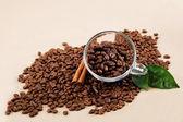 Cam bardak kahve çekirdekleri ve tarçın ile. — Stok fotoğraf