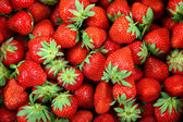 Fresh strawberry fruit as a backdrop. — Stock Photo