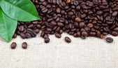 Roasted coffee beans on sackcloth. — Stock Photo