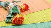 Fleurs séchées sur un fond de couleur. — Photo