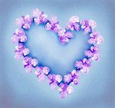 玫瑰的心 — 图库照片