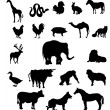 Royalty-Free Stock  : Set of animals silhouettes