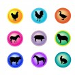 Stock Vector: Icons Set of Farm Animals