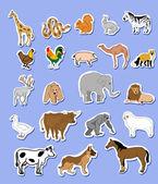 Set of animals  stickers — Stock Photo