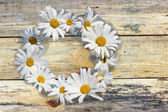 Flowers on Wooden boards background — Stock Photo