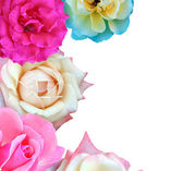 Isolated Roses Border — Stock Photo