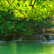 Stock Photo: Water fall in green forest