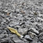 Dry leaf on pebble stones — Stock Photo