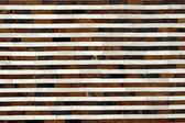 Wzór linii powłoki — Zdjęcie stockowe