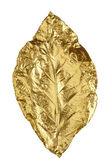 Golden bronze leaf isolated on white background — Stock fotografie