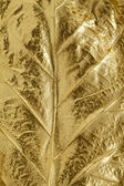 Golden leaf texture — Stock Photo