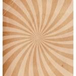 Vintage Spiral Texture Paper — Stock Vector #30804359