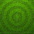 Standard Football Grass Field — Stockvector #30870859
