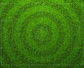 標準的なサッカーの草フィールド — ストックベクタ