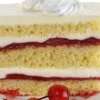 Strawberry Layered Cake — Stock Photo #13314239