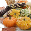 Stock Photo: Mini Pumpkins And Indian Corn