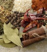 Spices Assortment — Stock Photo
