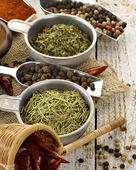 Baharat ürün çeşitliliği — Stok fotoğraf