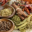 Spices Assortment — Stock Photo #14842783