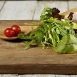 Salad Leaves And Tomatoes — Stock Photo