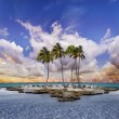 Stock Photo: Tropical landscape
