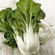 White Choy Sum - Stock Photo