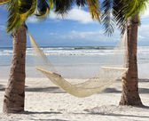 Hammock In The Tropical Beach — Stock Photo