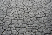Cracked Asphalt Road — Stock Photo