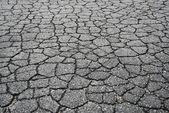 Cracked Asphalt Road — Stock Photo