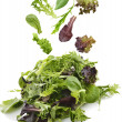 Stock Photo: salad leaves